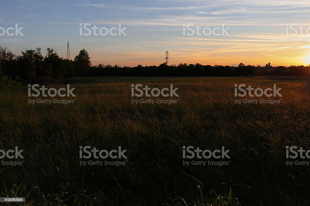 sunset in the fields stock photo