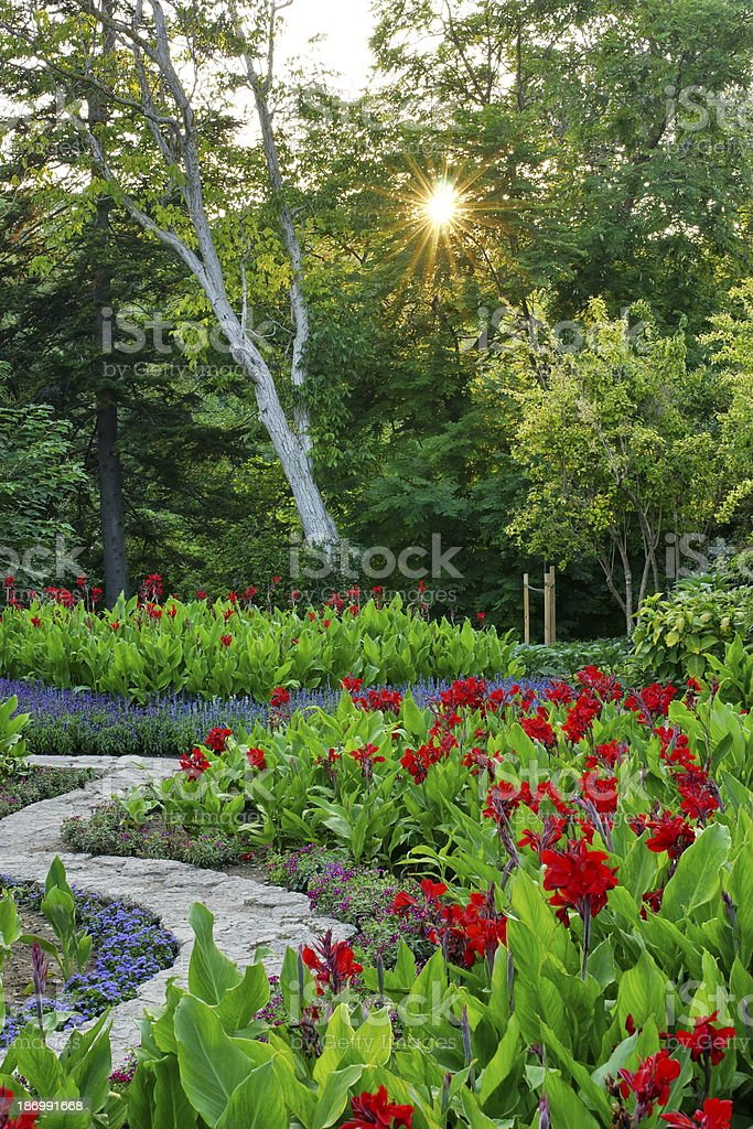 Sunset in the garden. stock photo