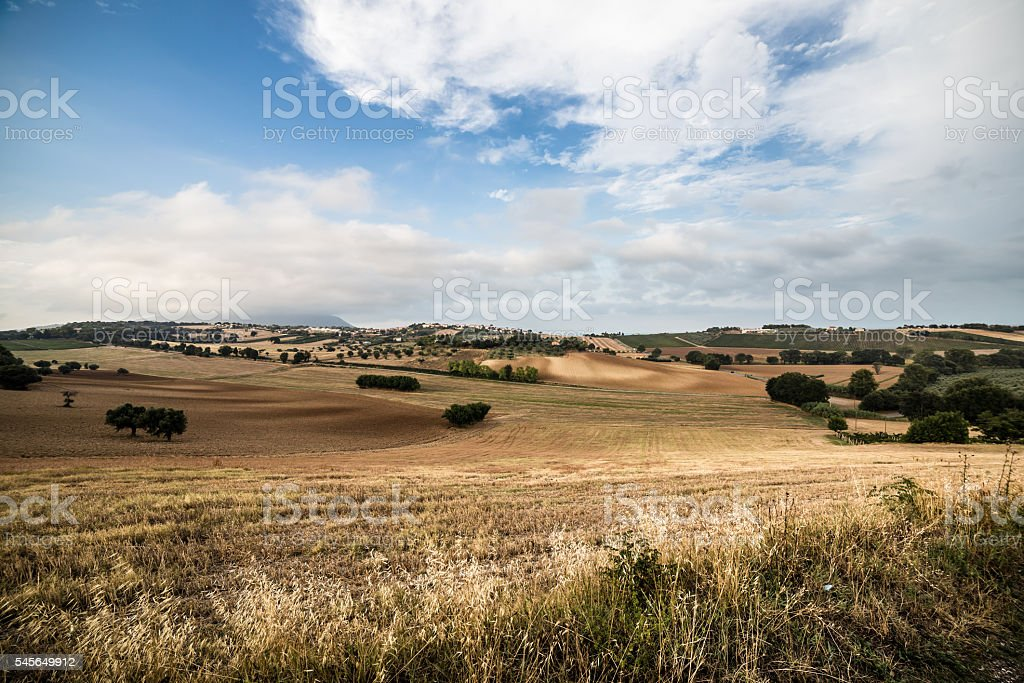 Sunset in the italian countryside stock photo