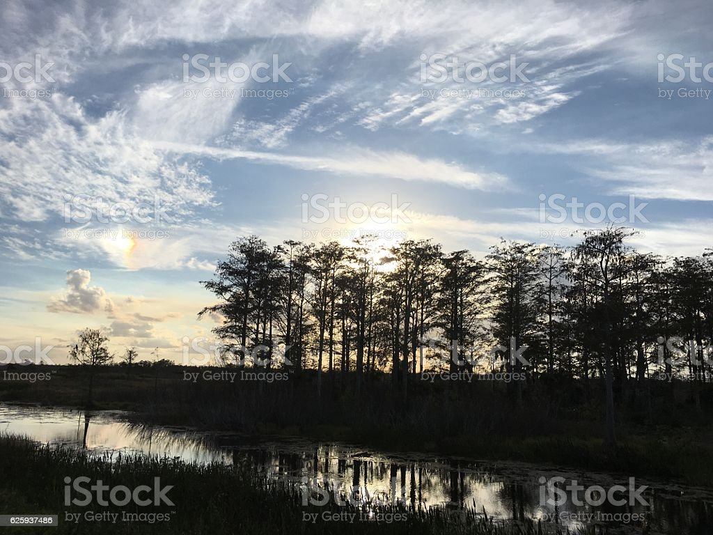 sunset in the swamp of Florida stock photo