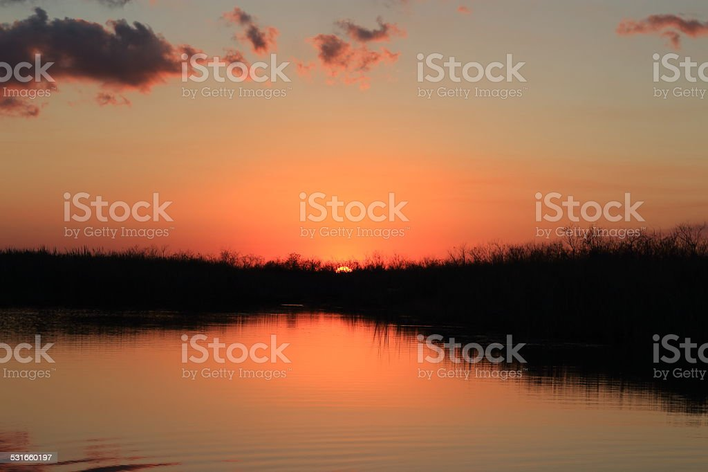 Sunset in the swamp royalty-free stock photo