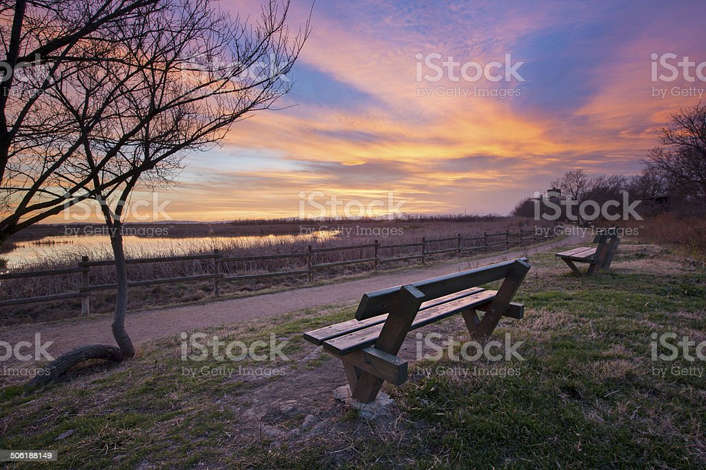 Sunset in the wetlands royalty-free stock photo