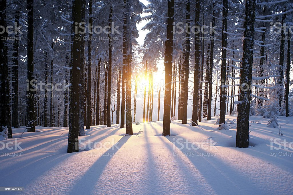 Sunset in winter period stock photo