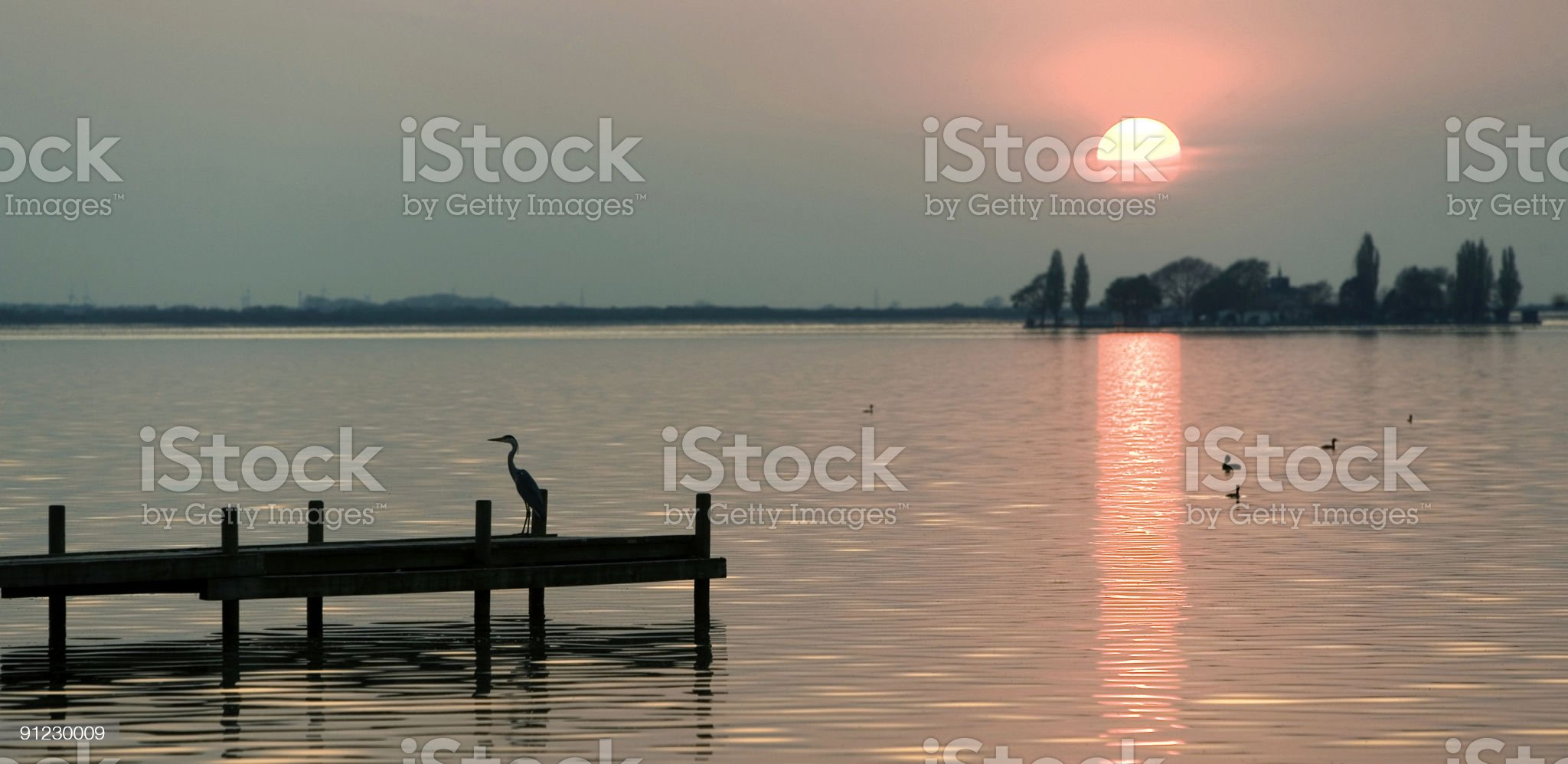 Sunset lakeside with silhouette of grey heron on jetty royalty-free stock photo