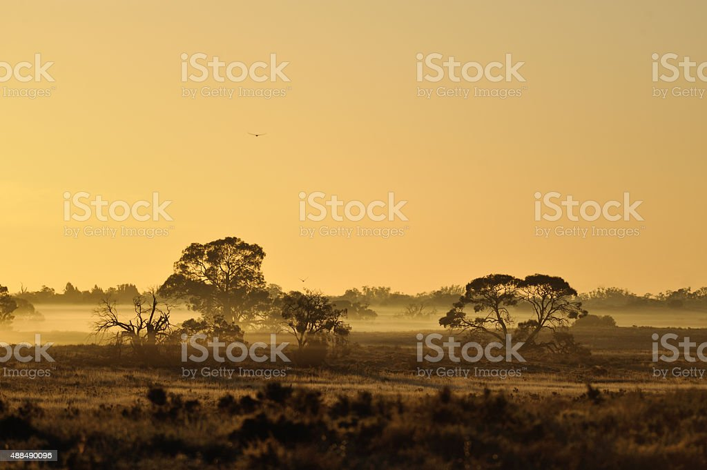 Sunset landscape, Outback Australia, stock photo