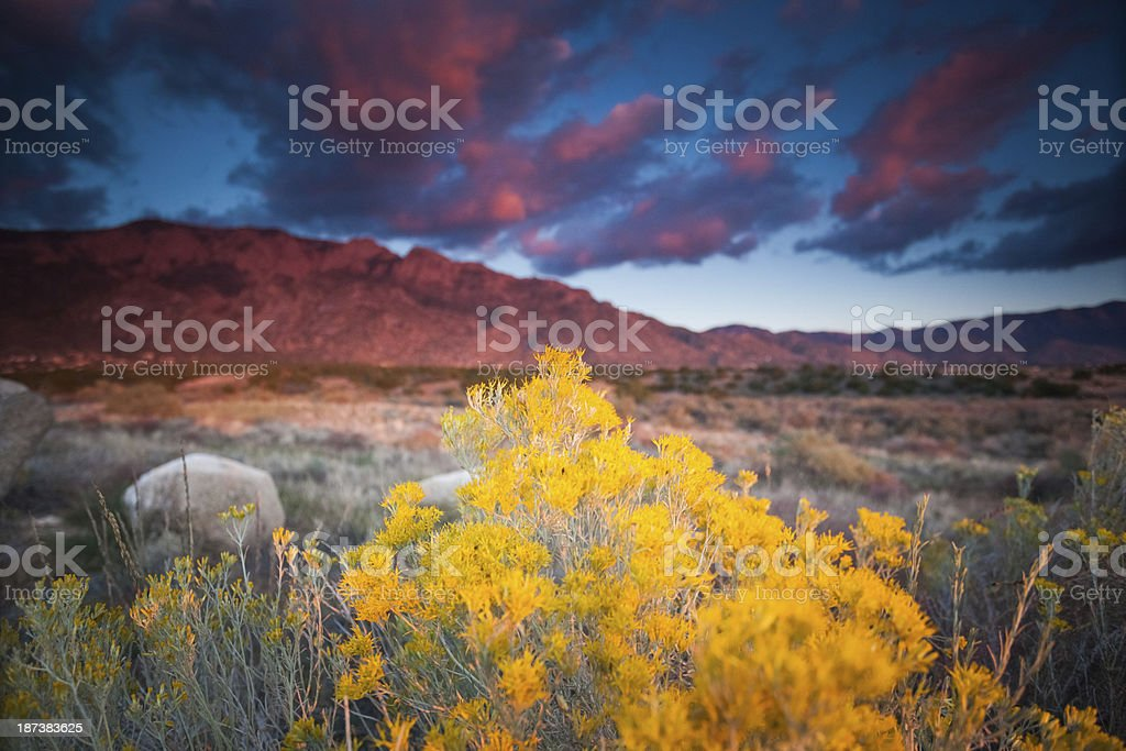 sunset landscape stock photo