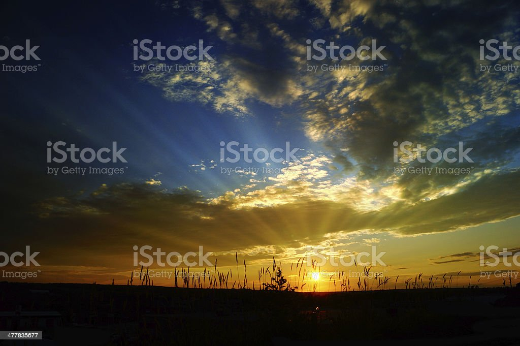 Sunset Landscape Scene With Tall Grass royalty-free stock photo