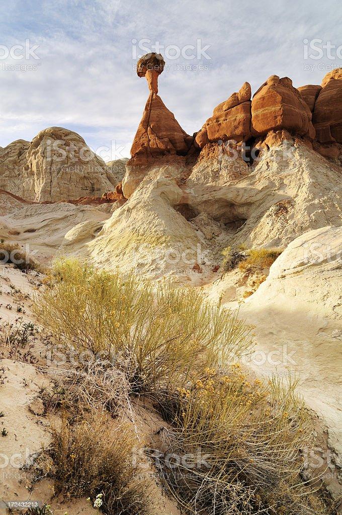 Sunset landscape with hoodoos at Paria Rimrocks, Utah, USA stock photo