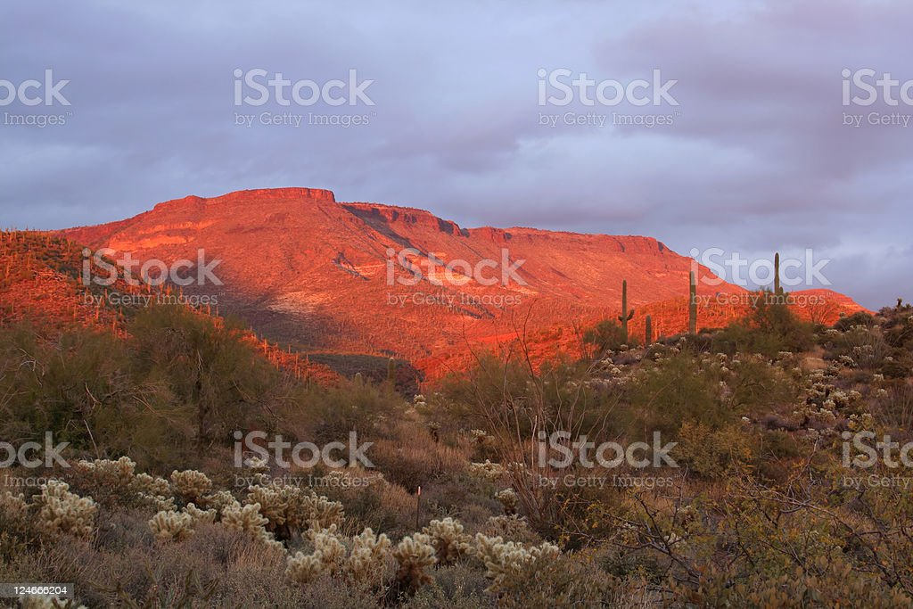 Sunset Light on a Desert Mesa royalty-free stock photo