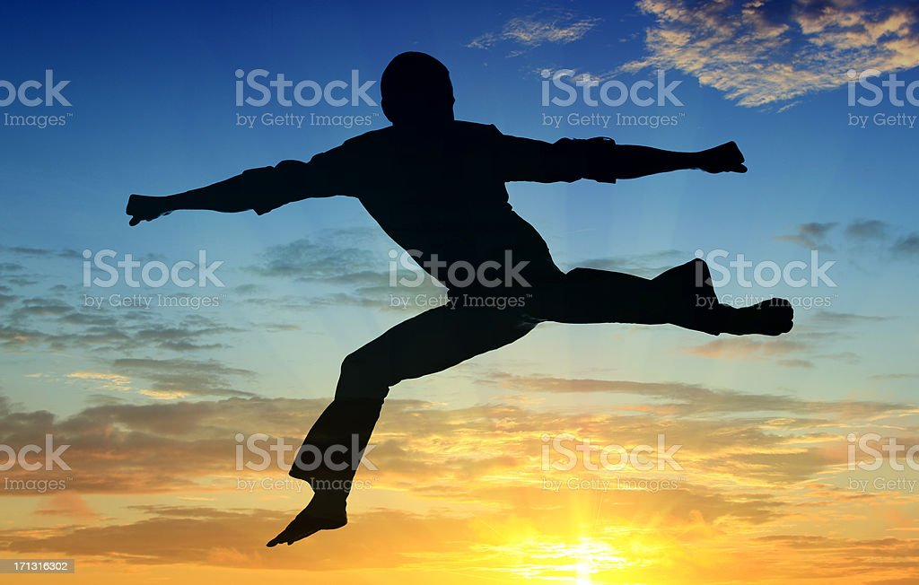 Sunset Martial Arts Silhouette royalty-free stock photo