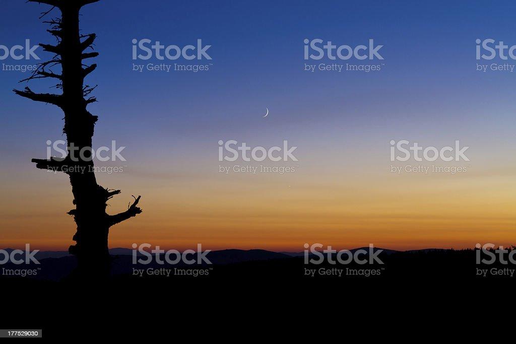 Sunset moon stock photo