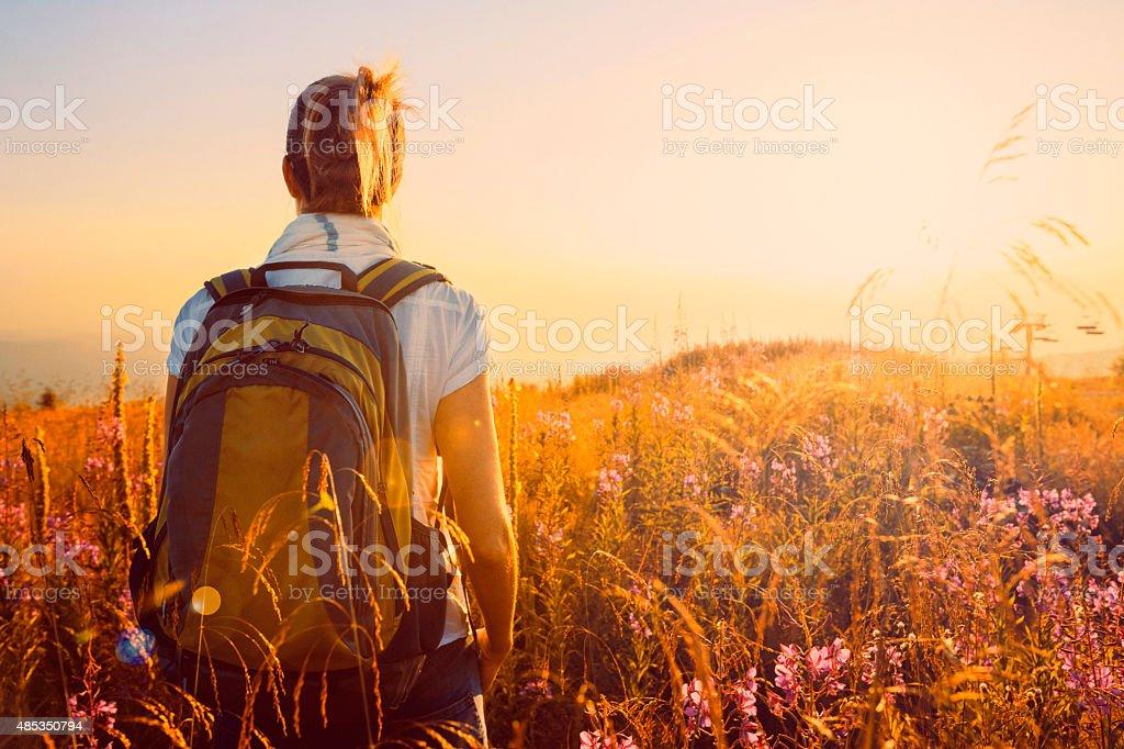 Sunset Mountain Landscape   Mid Adult Women Hiker   Wildflower Alpine Meadow stock photo