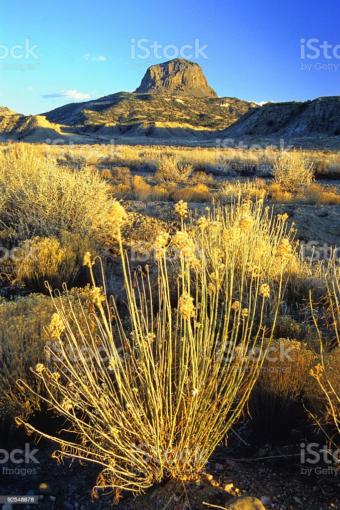 sunset mountain sage royalty-free stock photo