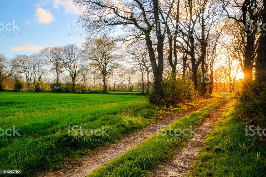 Sunset near Ockenhausen stock photo