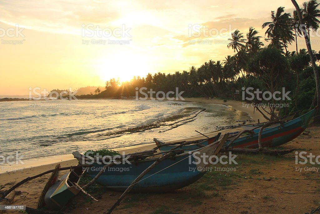 Sunset on a Beach of Sri Lanka royalty-free stock photo