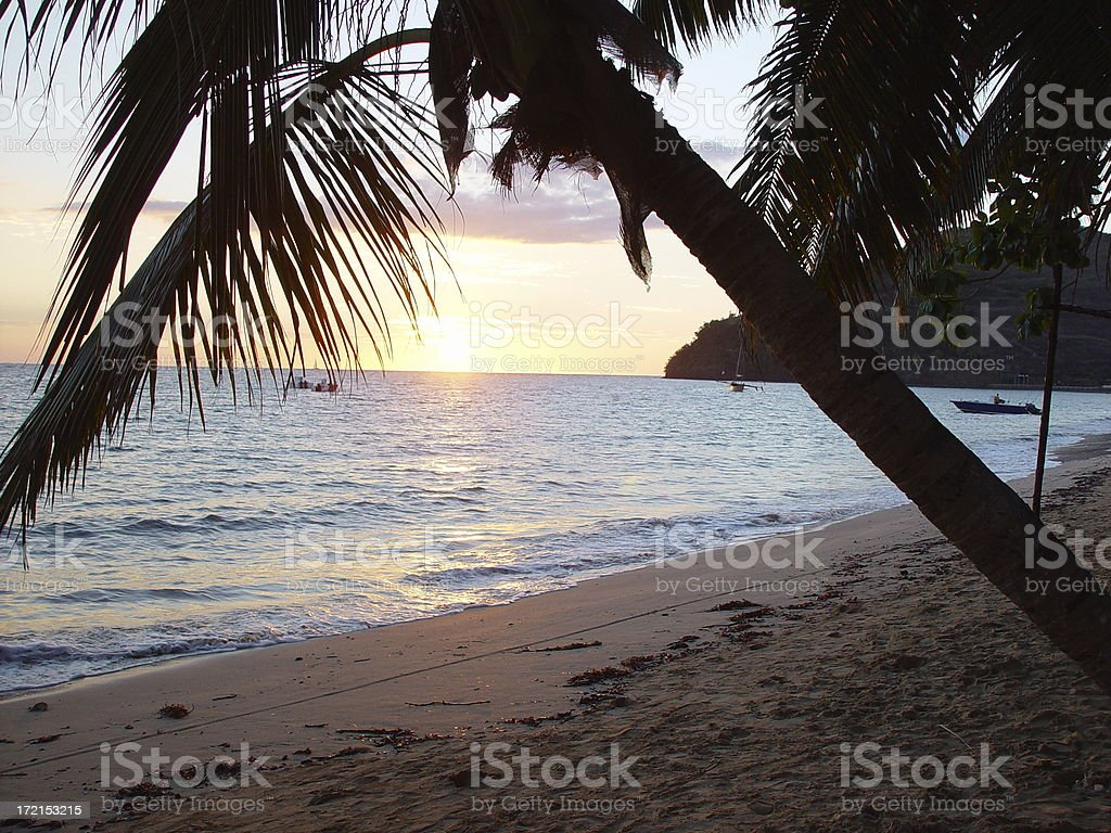 Sunset on a Madagascar Beach with Palm Trees (Nosi Be) royalty-free stock photo