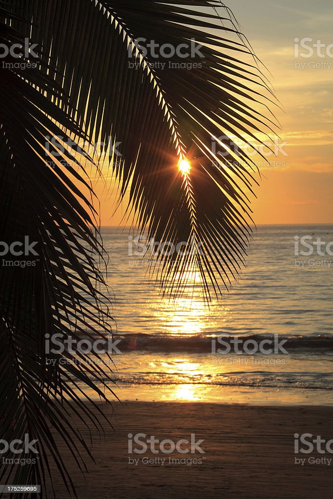 sunset on a Mexican beach stock photo