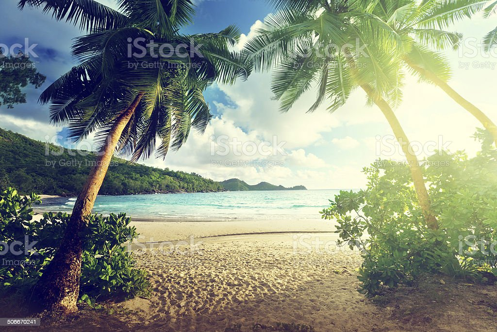 sunset on beach, Mahe island, Seychelles stock photo