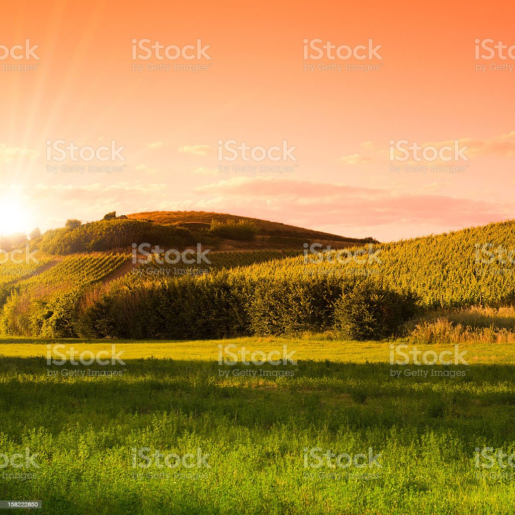 Sunset on hills in Tuscany - Italy royalty-free stock photo