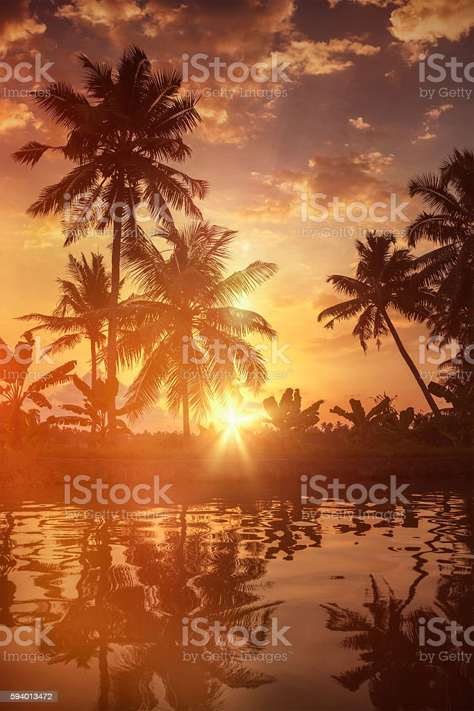 Sunset on Kerala backwaters stock photo