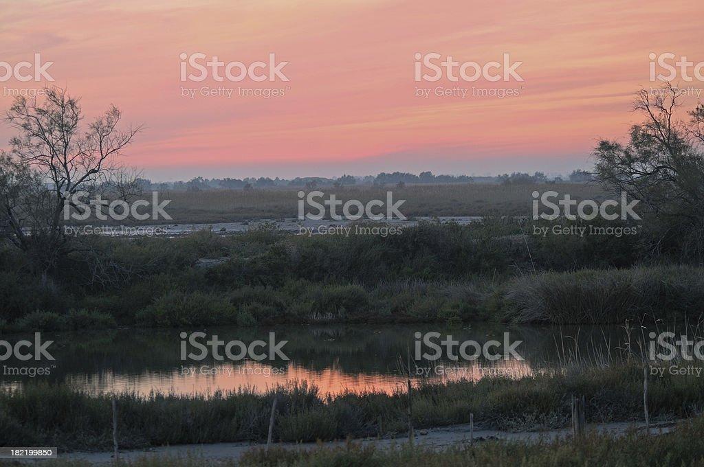 sunset on marsh, Camargue, France stock photo