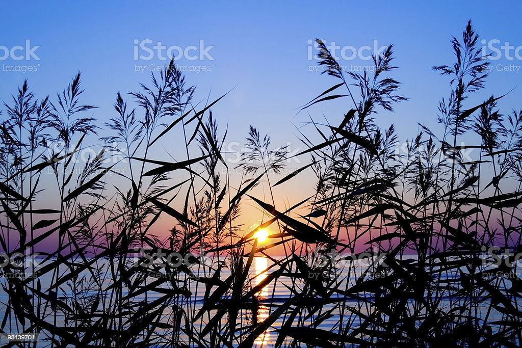 sunset on sea royalty-free stock photo