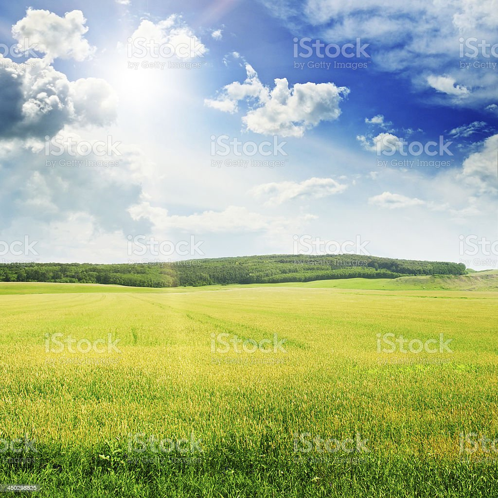 sunset on spring field royalty-free stock photo