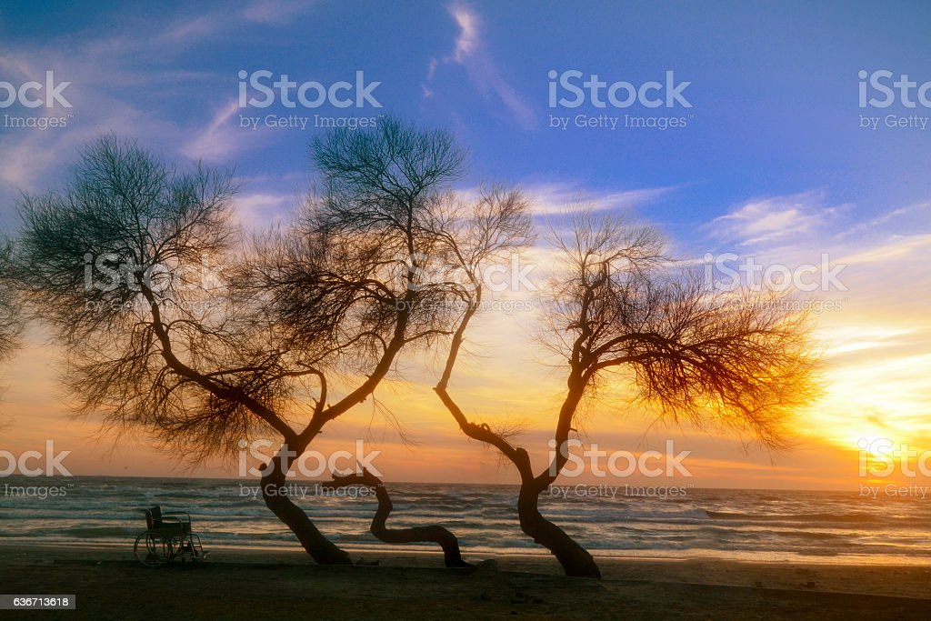 Sunset on the beach handicapped wheelchair stock photo