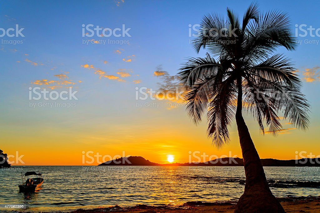 Sunset on the beach in Nosy Be Island with palm. stock photo