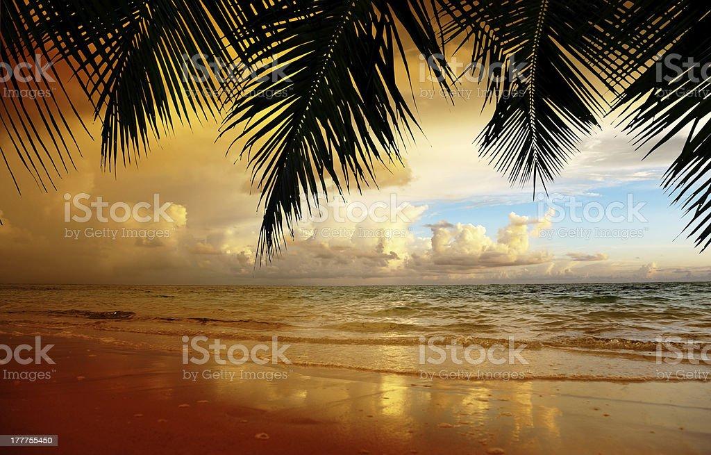 sunset on the beach of caribbean sea royalty-free stock photo
