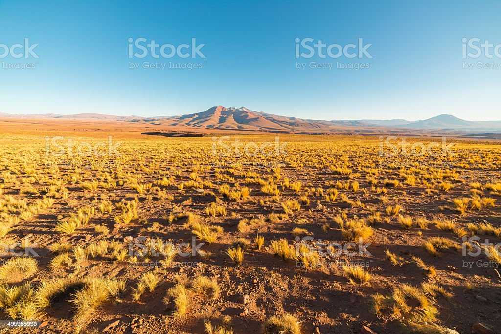 Sunset on the desertic Andean highlands, Southern Bolivia stock photo