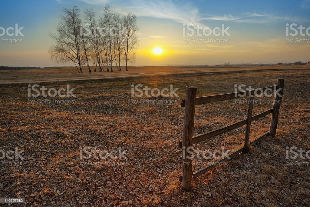 Sunset on the field royalty-free stock photo