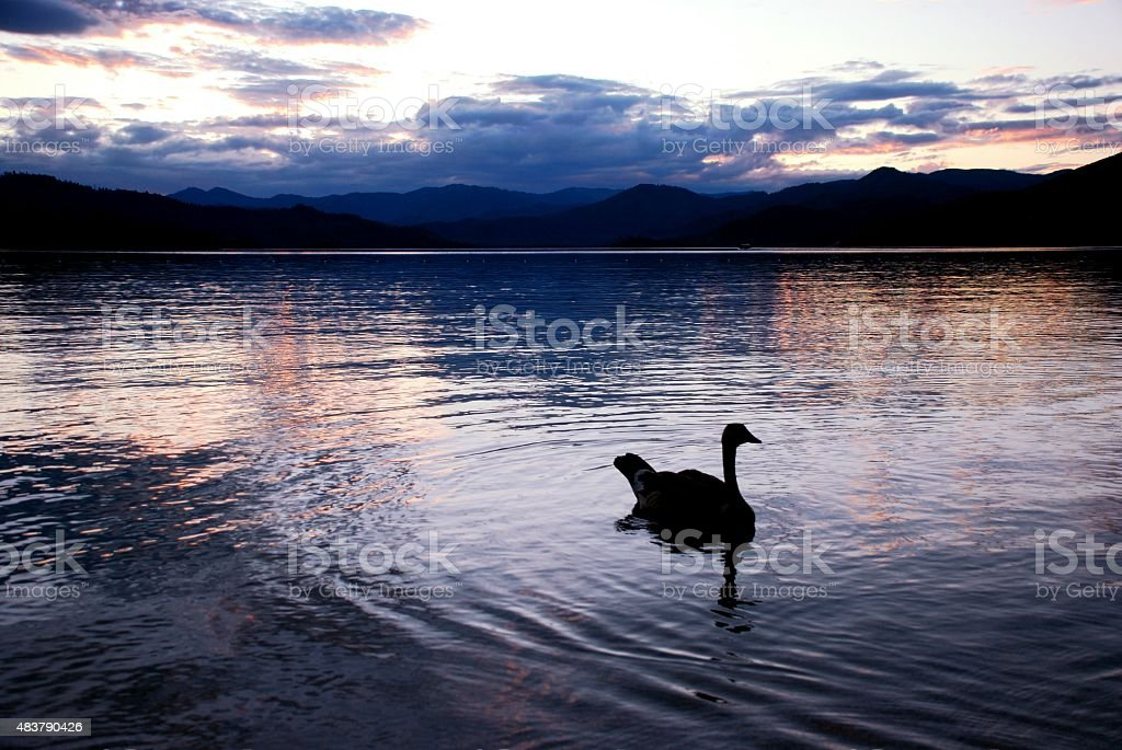 Sunset on the Lake stock photo