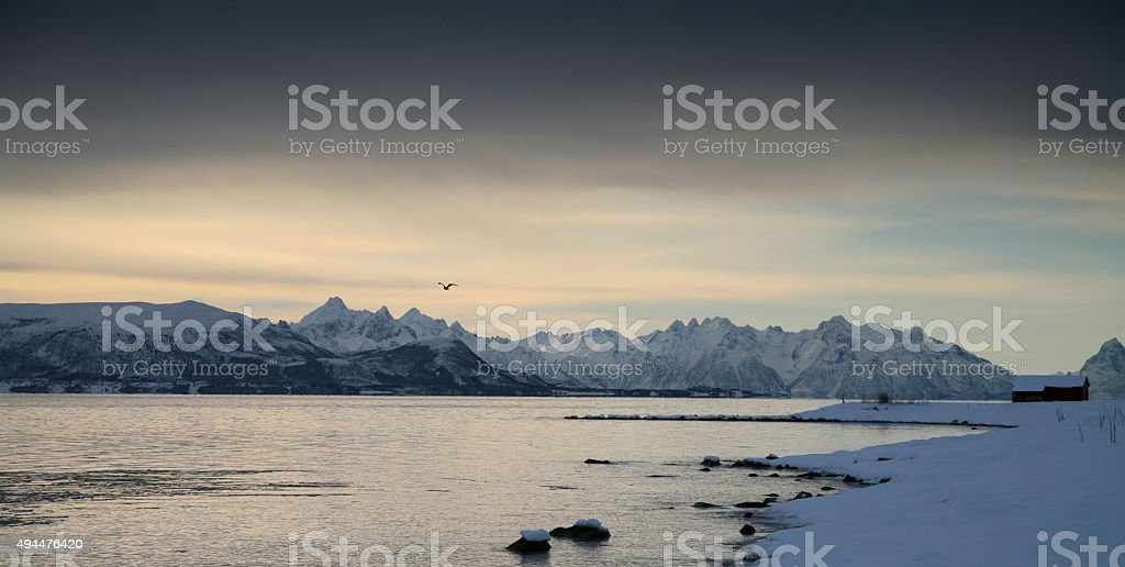 sunset on the lofoten norway stock photo