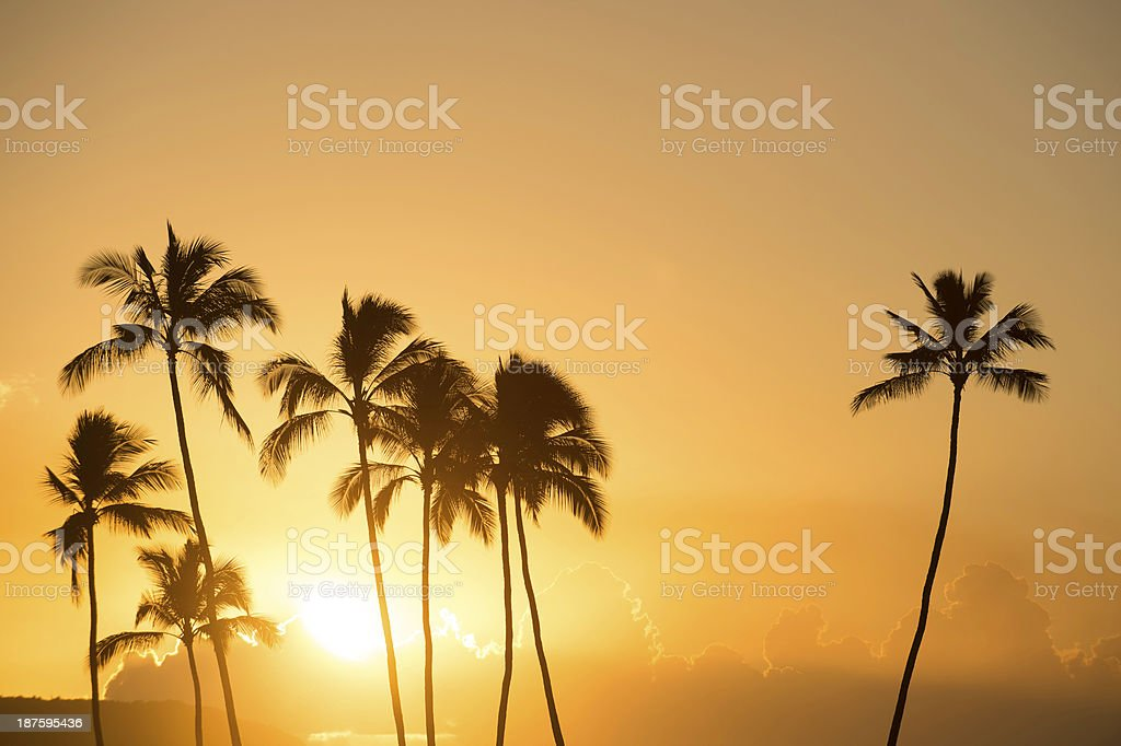 Sunset on the North Shore, Hawaii royalty-free stock photo