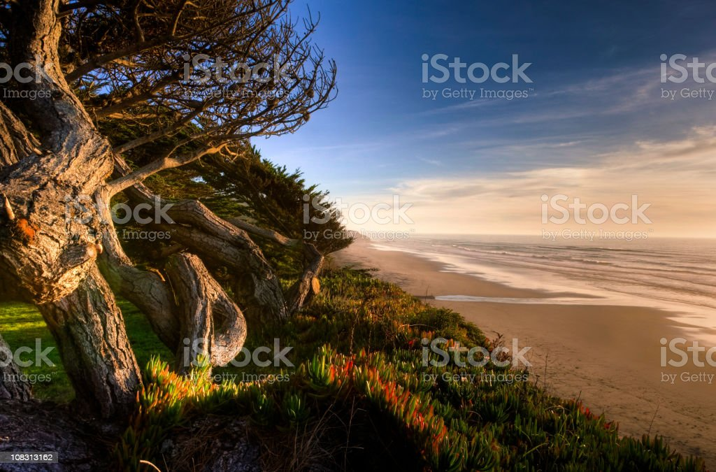 Sunset on the Waves royalty-free stock photo