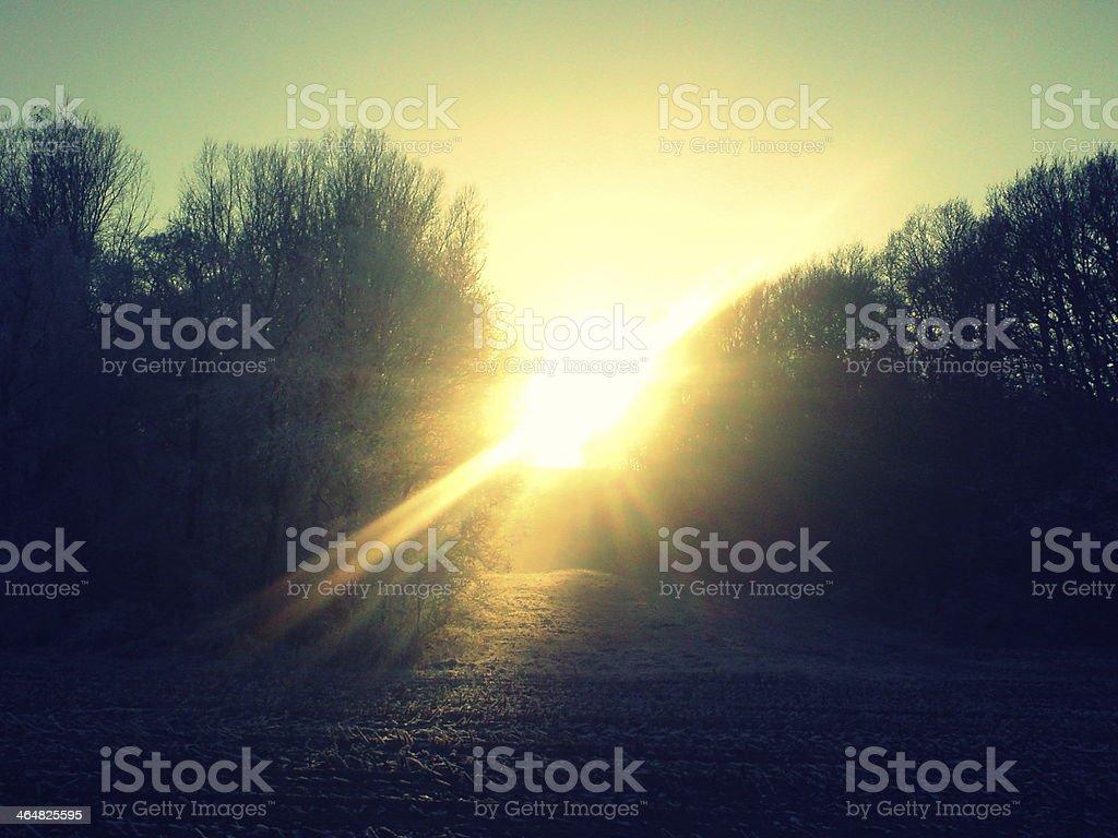 Pôr do sol sobre o campo estéril foto de stock royalty-free