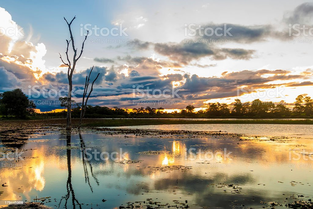 Sunset over a lake in Pantanal, Brazil stock photo