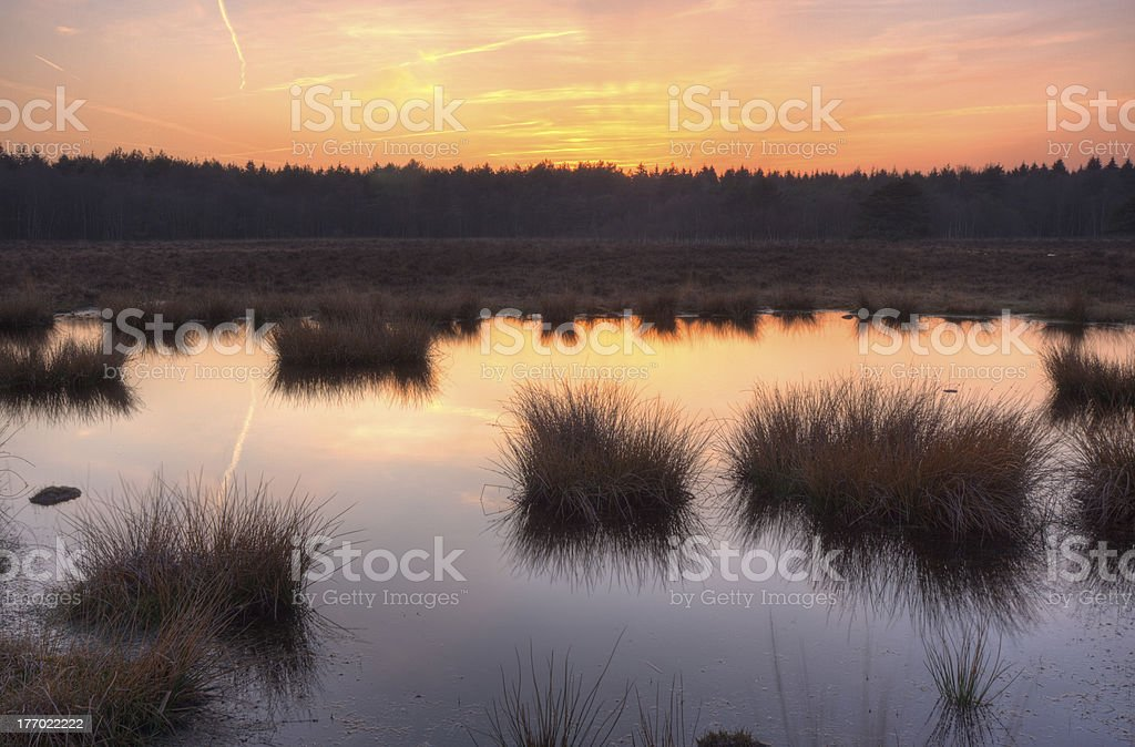 Sunset over a moor stock photo