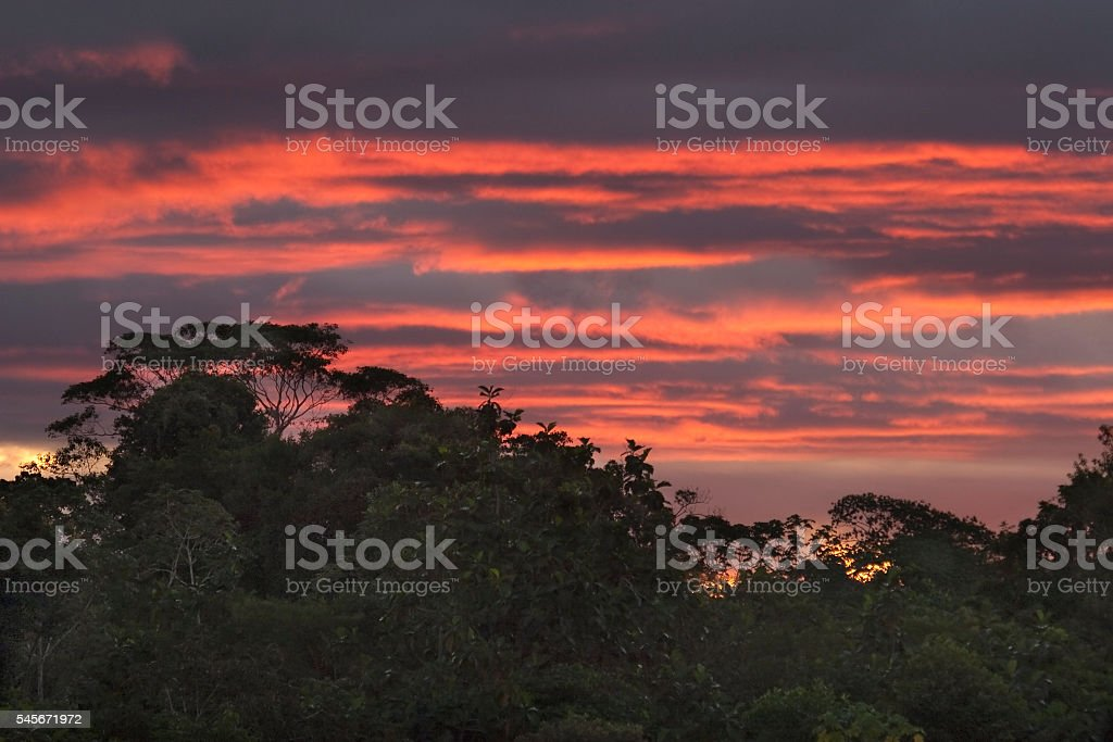 Sunset over Amazon river rainforest trees Peru stock photo