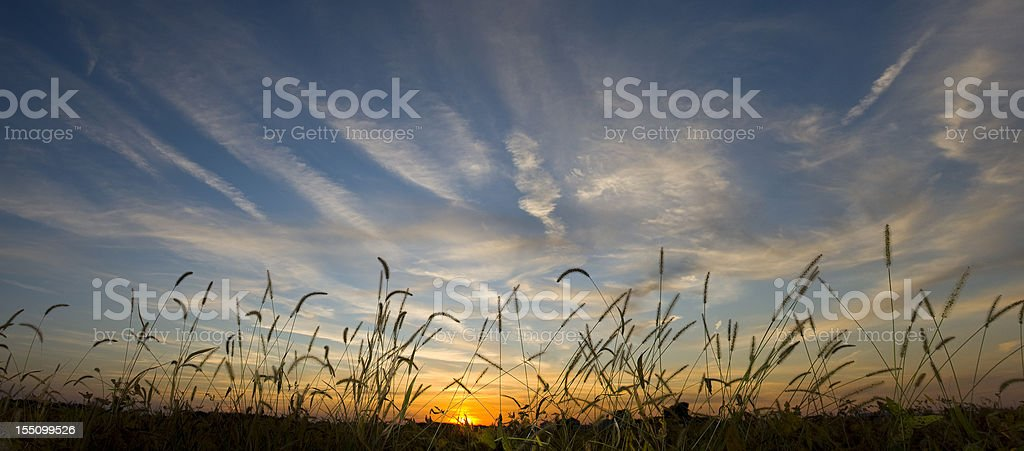 Sunset over an autumn field royalty-free stock photo