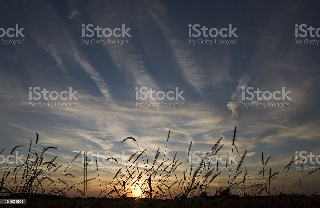 Sunset over an autumn field stock photo