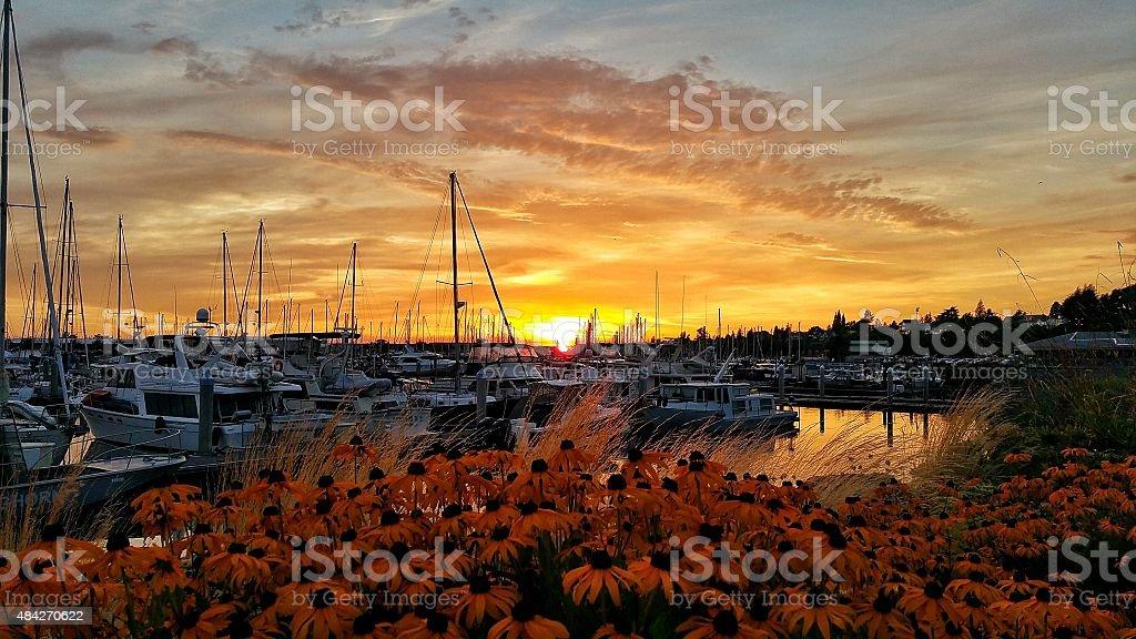Sunset over Bellingham Marina stock photo