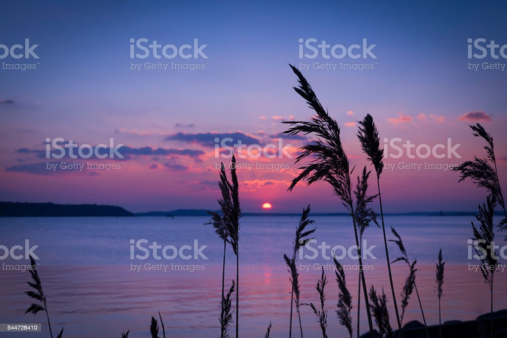 Sunset over Boats in Poole Harbour stock photo