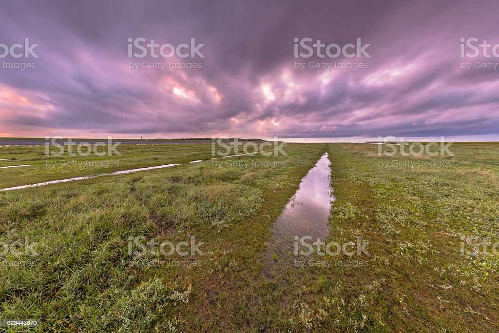 Sunset over ditch in tidal marsh stock photo