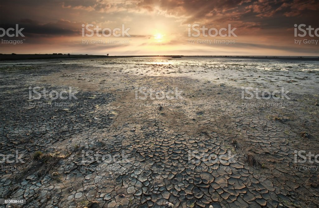 sunset over dried Wadden sea coast  at low tide stock photo