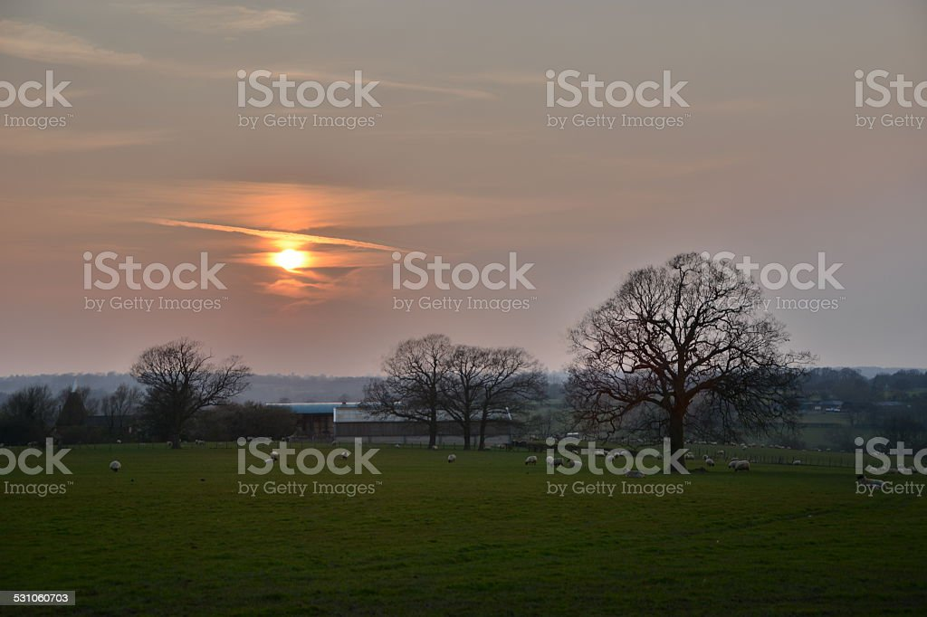Sunset over English Farm stock photo