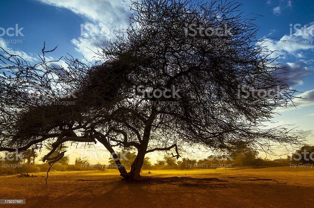 Sunset over Ethiopia royalty-free stock photo