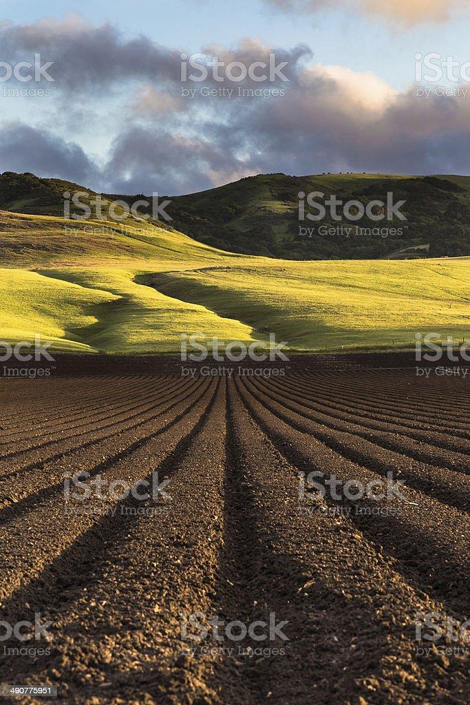 Sunset over Fertile Soil stock photo