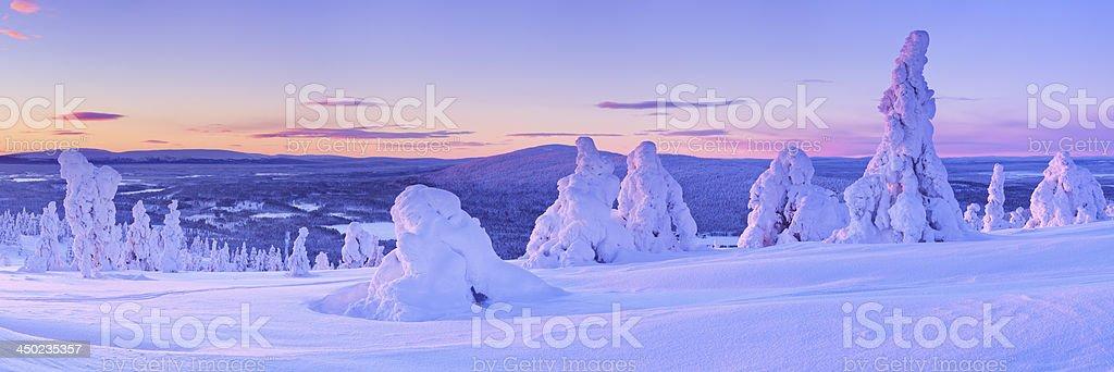 Sunset over frozen trees on a mountain, Levi, Finnish Lapland royalty-free stock photo